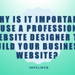 Why is it important to use a professional website designer to build your business website?