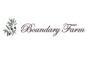 BFH-Logo